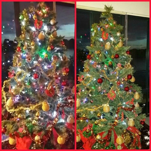 Christmas Tree Done: When Do You Put Up Your Christmas Tree?