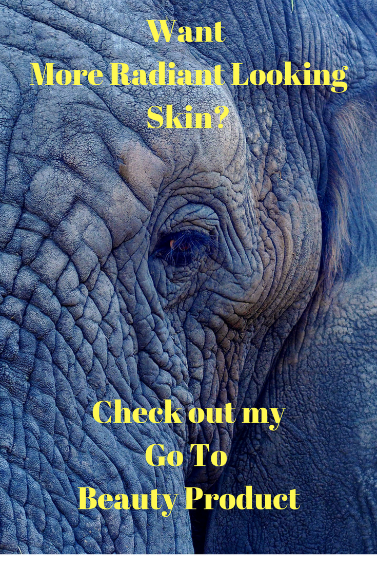 galvanic spa post pic of elephant skin