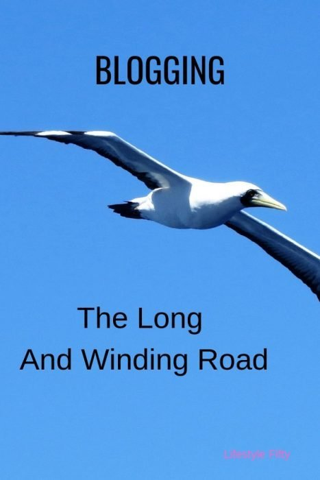 Blogging - The long and winding road - Pic of bird in blue sky - Post about blogging