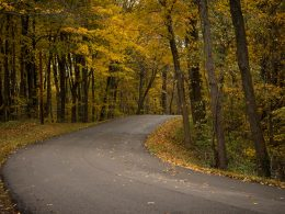 Blogging - pic of winding road