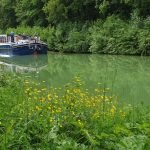 13 Things You'll Love about a Barge Cruise in France