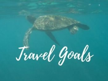 travel goals, pic of turtle