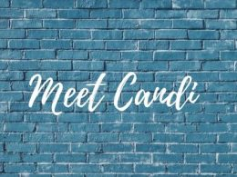 Blue Wall with text Meet Candi who shares blogging tips and tricks in this post