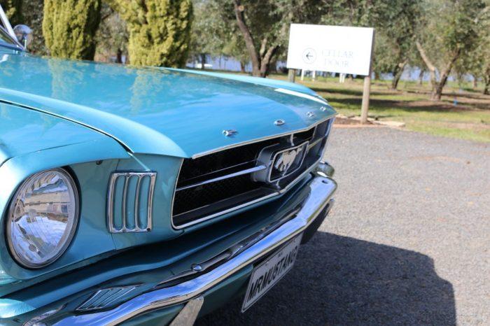 Mustang, blue
