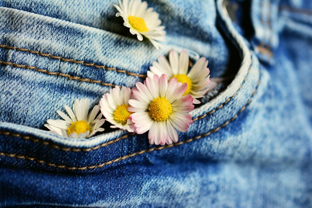 Jeans pocket and daisies
